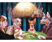 Puzzle Hraní karet