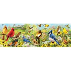 Puzzle Barevní ptáčci - PANORAMATICKÉ PUZZLE