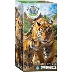 Puzzle Tygři