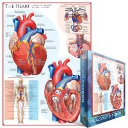 Puzzle Srdce - schéma
