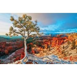 Puzzle Grand Canyon, zimní slunce