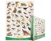 Puzzle Ptáci
