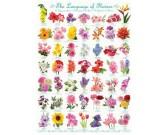 Puzzle Květiny