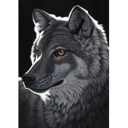 Puzzle Vlk v noci