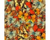Puzzle Svět motýlků