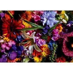 Puzzle Zářící lilie