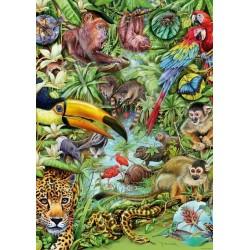 Puzzle Deštný prales