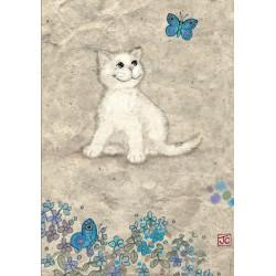 Puzzle Bílé kotě