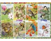 Puzzle Roční období - ptactvo