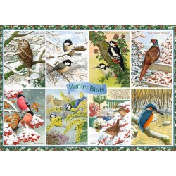 Puzzle Ptáci v zimě