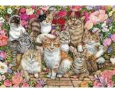 Puzzle Kočky v květinách