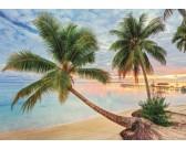 Puzzle Francouzská polynesie