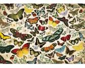 Puzzle Motýli