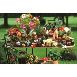 Puzzle Ovoce a zelenina