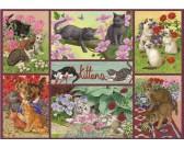 Puzzle Koťata