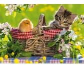 Puzzle Připraveni na piknik