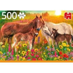 Puzzle Koně na louce