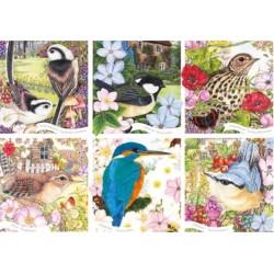 Puzzle Ptáci naší přírody
