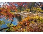 Puzzle Procházka v Central parku