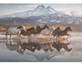 Puzzle Koně v Kapadokii