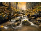 Puzzle Okouzlující potok