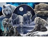 Puzzle Krása vlků