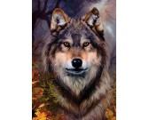 Puzzle Vlk