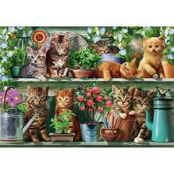 Puzzle Kočky v policích
