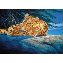 Puzzle Leopardi