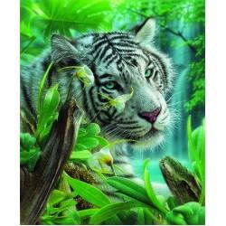 Puzzle Bílý tygr z ráje