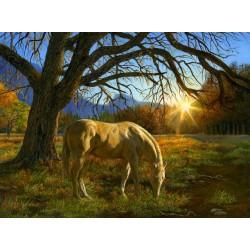 Puzzle Kůň na pastvě
