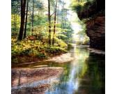 Puzzle Tichý les