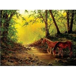Puzzle Koně v lesním potoce