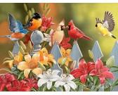 Puzzle Ptáčci na plotě - XXL PUZZLE
