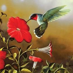 Puzzle Kolibřík s červeným květem - XXL