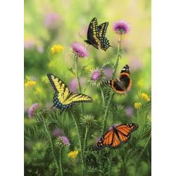Puzzle Motýli na bodláku