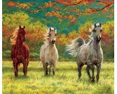 Puzzle Tři koně - XXL PUZZLE
