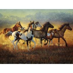 Puzzle Stádo divokých koní