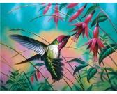 Puzzle Kolibřík