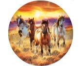 Puzzle Koně - KULATÉ PUZZLE