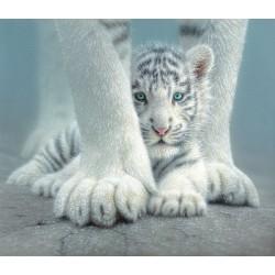 Puzzle Mládě sněžného tygra