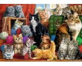 Puzzle Kočičí svět
