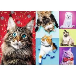 Puzzle Veselé kočky