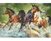 Puzzle Divocí koně