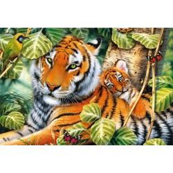 Puzzle Dva tygři
