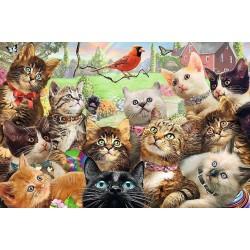 Puzzle Zvědavné kočičky - DĚTSKÉ PUZZLE