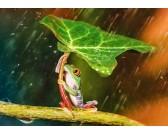 Puzzle Zelený deštník