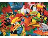 Puzzle Barevní ptáčci