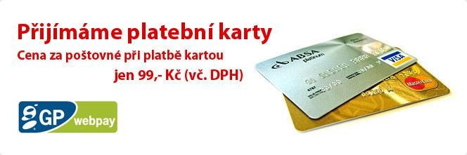 2 Platební karty
